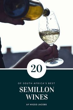 With nothing short of stunning wines being made, savvy connoisseurs are already including Semillon in their reference when shopping for Cape whites.
