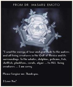 Dr. Masaru Emoto's water crystals show us the power of words; be kind and speak kindly to others:)