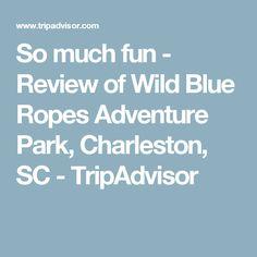 So much fun - Review of Wild Blue Ropes Adventure Park, Charleston, SC - TripAdvisor