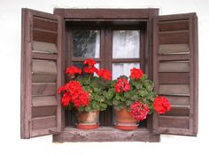 Őrség, Hungary Hungary, Floral Wreath, Wreaths, Plants, Home Decor, Windows, Doors, Decoration Home, Room Decor