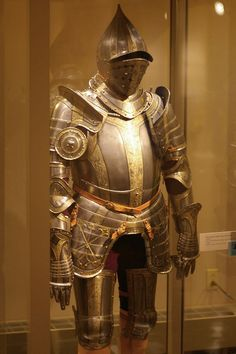 Three-quarter field armour    Germany, ~1550.