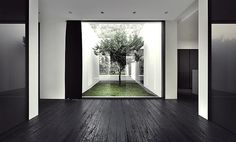 cz house-I love bringing nature into houses.  puts me at ease...