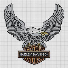Harley Eagle 2 of 2