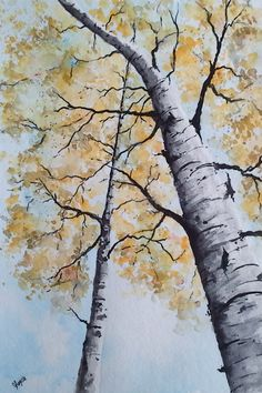 Original Watercolor Painting Birch Tree Art by pinetreeart on Etsy, $59.00