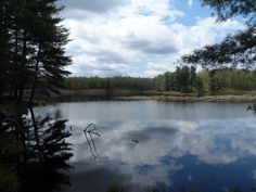 Gibson Lake Loop at Frontenac Provincial Park