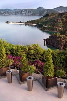 Zero percent humidity rate and high oxygen levels… Experience the finest quality of nature at D-Hotel Maris.
