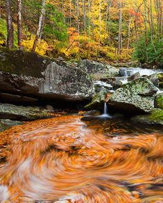 Great Smoky Mountains National Park, Tennessee by Richard Bernabe. See his wonderful Earth and Light blog. ~Deb