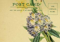 http://callmevictorian.com/wp-content/uploads/2013/03/spring-flowers-digital-postcard.jpg