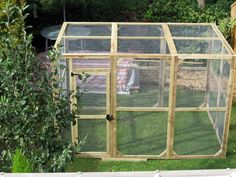 outdoor tegu cage - Google Search