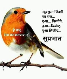 Good Morning Wishes Quotes, Morning Prayer Quotes, Good Morning Flowers Gif, Good Morning Image Quotes, Hindi Good Morning Quotes, Good Morning Images Hd, Good Morning Inspirational Quotes, Good Night Wishes, Morning Greetings Quotes