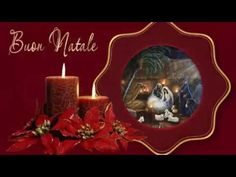 Merry Christmas (Nana Mouskouri-Ave Maria) - YouTube Merry Christmas, Christmas Ornaments, Birthday Candles, Candle Holders, Memories, Dreams, Holiday Decor, Youtube, Merry Little Christmas