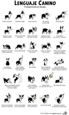 Bebés, niños y perros, los consejos prácticos de Santi Vidal para una convivencia sin sobresaltos | SrPerro.com, la guía para animales urban...