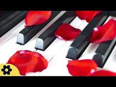 6 Horas Música instrumental de piano: Sonidos naturaleza, Música de relajación, Meditación ✿2662C - YouTube