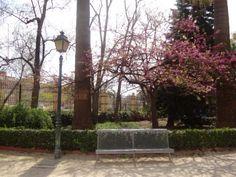 Un precioso rincón del Jardín de Ayora en Valencia. Imagino la cantidad de fotografías de boda que podrían salir de aquí...