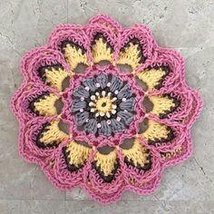Flor rosa e cinza