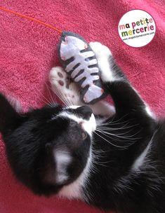 diy chat jouet - for Alan !