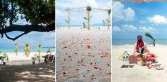 Ocean, Beach Weddings, Weddings At The Beach, Sea, The Ocean, Groom Beach Weddings