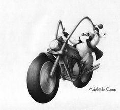 chat motard crayon à papier