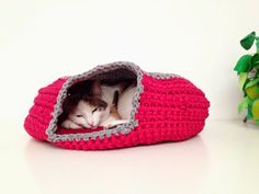 Crochet Cat Cave - with link to free pattern