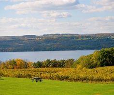 Standing Stone Vineyards. Located on Seneca Lake, in the Finger Lake Region of NY.