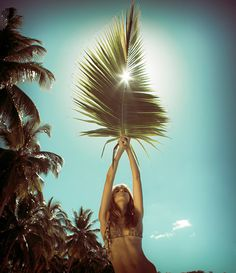 get tropical - palm leaf - beach babe - bikini summer