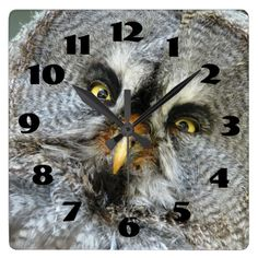 Gorgeous Great Grey Owl Close Up Wall Clock