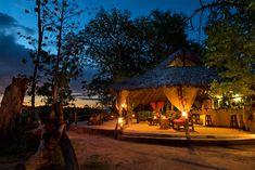The riverbank bar at Selous River Camp, Tanzania River Camp, Safari Adventure, Tanzania, Dining Area, Camping, Patio, Bar, Outdoor Decor, Home Decor