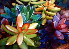 Succulents | Mary Gibbs Art