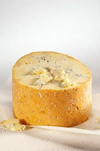 Fourme de Montbrison (Cow's milk) - from Rhône-Alpes. Recommended wine to go with it: Chardonnay Fromage Aop, Fromage Cheese, Queso Cheese, Meat And Cheese, Wine Cheese, Best Cheese Platter, Gourmet Cheese, French Cheese, Artisan Cheese