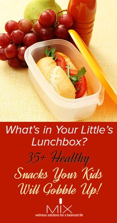 What's in Your Little's Lunchbox? 35+ Healthy Snacks Your Kids Will Gobble Up!   www.mixwellness.com