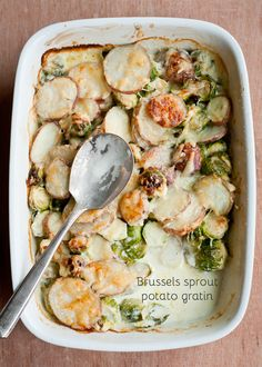 Cafe Johnsonia: Brussels Sprout Potato Gratin