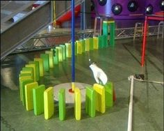In het technologisch museum Nemo in Amsterdam kun je iets bijzonders zien. Daar zet de beweging van één dominosteen een hele besturingsbaan in werking. Een kettingreactie heet dat. Kijk maar eens!