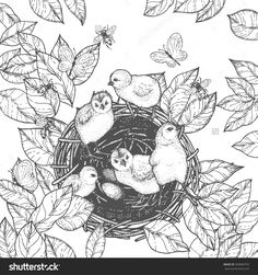 Coloring Book Page Design For Adults And Kids Cute Animals Black White
