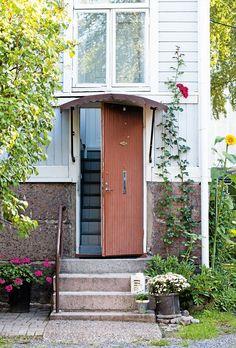 Köynnösruusu ja auringonkukka ovat innostuneet kasvamaan naapurin Nissen hoidossa Mattssoneiden Ahvenanmaan-loman aikana.