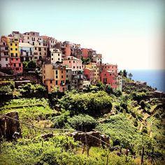 #corniglia #cinqueterre #hiking #mediterranean #italy #italia