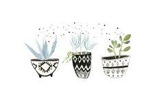 LINDSAY GARDNER - DIY Aztec Print Succulent Pot