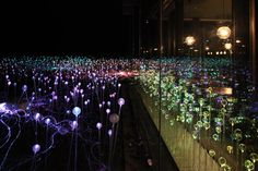 Bruce Munro... He's got an installation at Longwood Gardens that I'm trying to see June 9th!