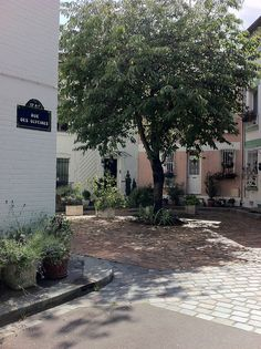 Rue des Glycines Paris La rue des Glycines est une voie située dans le quartier de la Maison-Blanche du 13ᵉ arrondissement de Paris en France. Elle fait partie des rues qui composent la cité florale. Wikipédia