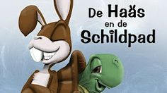 haas enschildpad - YouTube