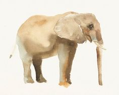 Watercolor elephant | ELEPHANT Original watercolor painting 10X8inch