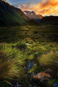 Mountain Sunset, New Zealand