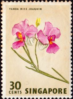Singapore 1962 SG 73 Flower Orchid Fine Mint SG 73 Scott 65 Other British Commonwealth stamps here