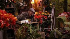 Blomma, blad, en miljard, 10 program: Matteköping är en fridfull liten stad men under den lugna ytan pågår en maktkamp. Linus Bladh äger blomsteraffären, men den går nog inte så bra, för han kan inte räkna. Sirkka Schöön har skönhetssalongen, men vill ha mer. Som Kapten Balans och Madame Ungefär utkämpar de matematiska superhjältestrider.