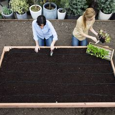 How to Build a Raised Garden Bed The perfect raised bed Step-by-step: Build the ultimate raised bed -Get instructions for the ultimate planting box for your veggies Building A Raised Garden, Raised Garden Beds, Raised Beds, Edible Garden, Easy Garden, Garden Kids, Backyard Projects, Outdoor Projects, Garden Boxes