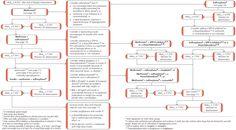 NICE diabetes algorithm and some teaching info