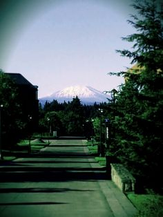 Mount St Helen's at WSU campus on Vancouver Washington