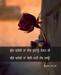 Attitude Quotes For Girls, Girl Quotes, Woman Quotes, True Quotes, Qoutes, Deep Quotes, Punjabi Love Quotes, Punjabi Poetry, Cute Photography
