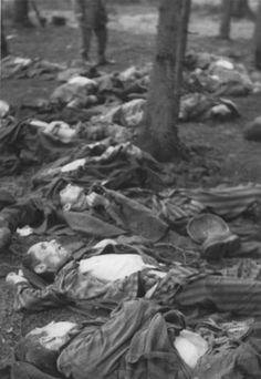 Leipzig, Germany, Dead bodies cast in the forest, after the liberation.
