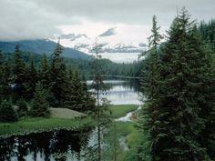 Best vacation we ever had... Alaska