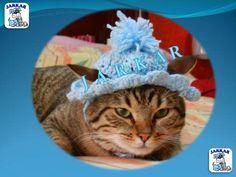 43e2ed2d3e427 Gorro Tejido Para Gatos Talla 1 O 2 -   60.00 en MercadoLibre Accesorios  Para Mascotas